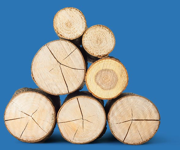 Timber marking stacked logs photo- Forecast Technology's synthetic DNA tagging product